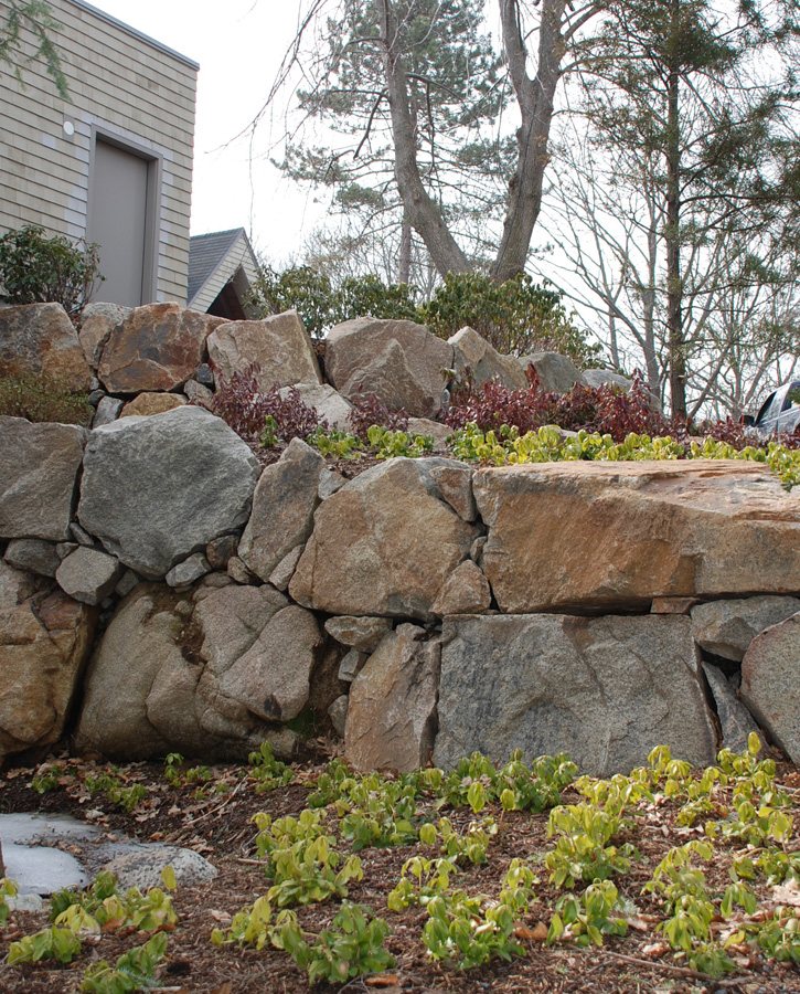 Stone Retaining Wall and New Shrubbery