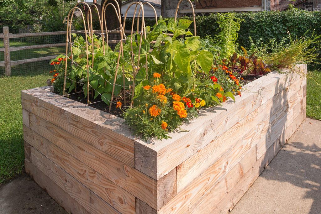 Raised Flower and Garden Bed