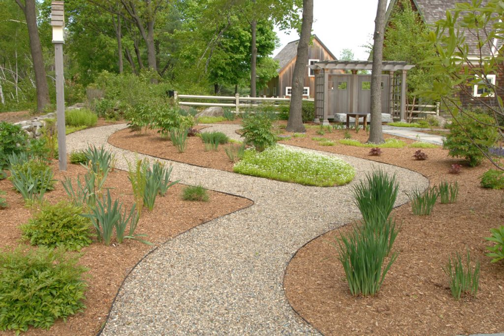 Plantings along Gravel Path