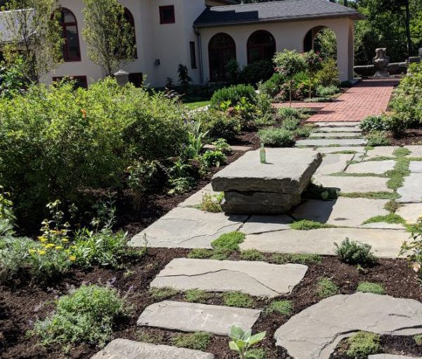 Stone Pavers with Bench and Shrubs