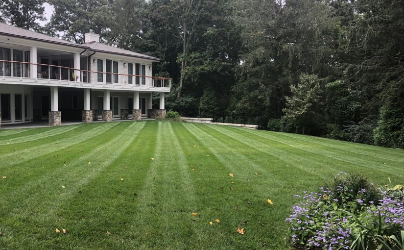 Sod Installation and Lawn Care