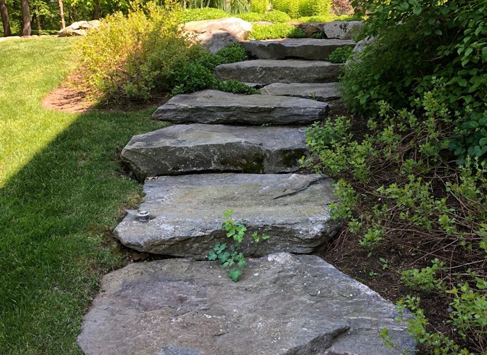 Stone Steps and Bushes