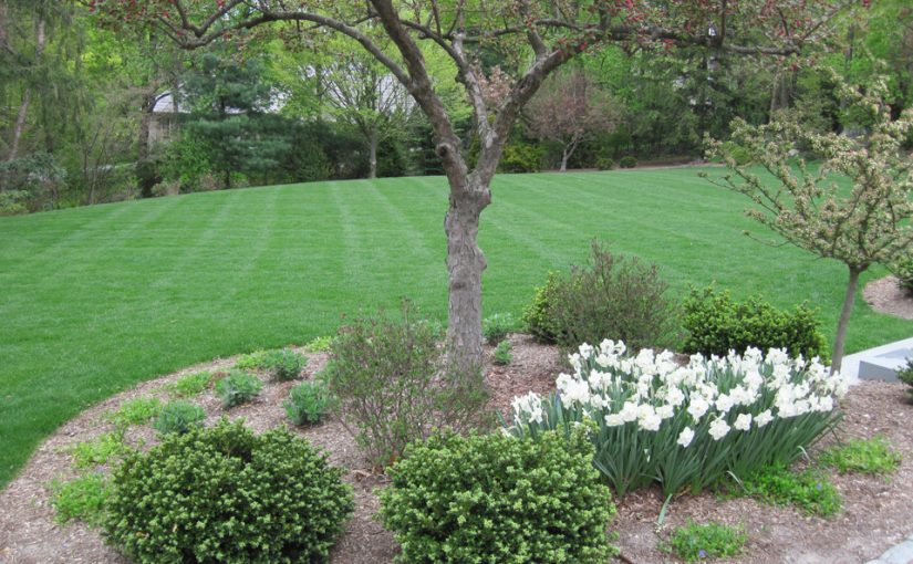 Flowers, shrubs, mulching and lawn care